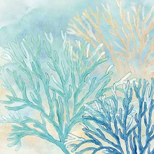 Posterazzi Coral Reef II Poster Print by Cynthia Coulter (12 x 12)