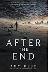 After the End Paperback