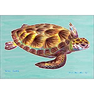 Coastal Green Sea Turtle Outdoor Wall Hanging