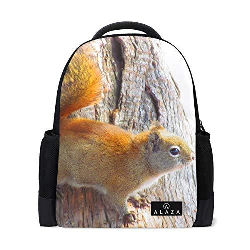 Backpack Squirrel Animal Rodent Tree Mens Laptop Backpacks Shoulder Hiking Daypack ()