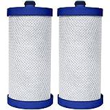 2-Pack - Frigidaire Puresource Compatible WF1CB WFCB, RF100, RG100, NGRG2000, RF-100, RG-100, NGRG-2000 Filter. Also Fits Kenmore 46-9906, 469906, 9906, 46-9910, 469910, 9910