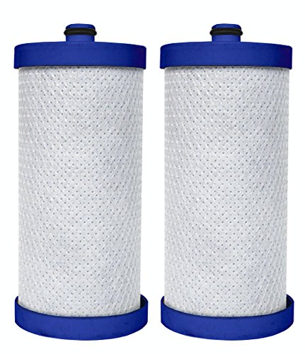 Dista - Refrigerator Water Filter Compatible with WF1CB WFCB, RF100, RG100, NGRG2000, RF-100, RG-100, NGRG-2000 Frigidaire Puresource & Kenmore 46-9906, 469906, 9906, 46-9910, 469910, 9910.