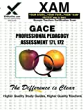 Gace Professional Pedagogy Assessment 171, 172, Sharon Wynne, 1581975422