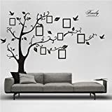 Best Picture Frames  Quotes - X Large Home Art Decals Family Tree Birds Review