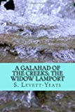A Galahad of the Creeks; the Widow Lamport, S. S. Levett-Yeats, 1494876353