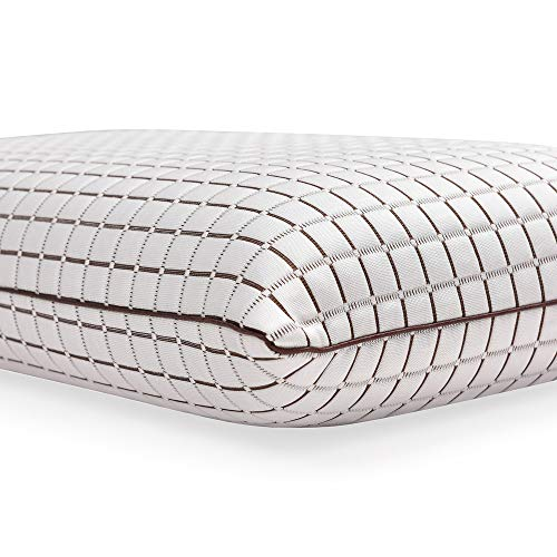 Classic Brands 810352-6060 Coconut Infused Ventilated Memory Foam Pillow, King, White