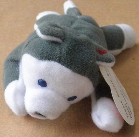 TY Teenie Beanie Babies Nook the Husky Stuffed Animal Plush Toy - 5 inches long - In original plastic (Ty Stuffed Husky)