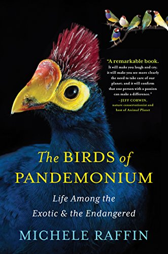 The Birds of Pandemonium cover