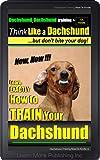 Dachshund, Dachshund Training A: Think Like a Dachshund... but don't bite your dog!   | Learn EXACTLY How to Train Your Dachshund: Dachschund