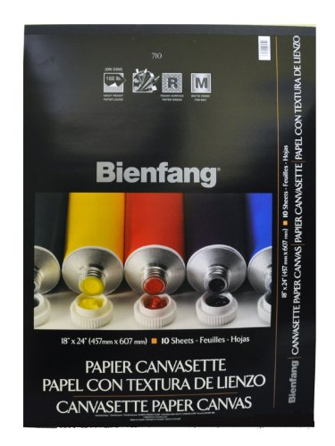 Bienfang Canvas (Bienfang Canvasette Paper, 10 sheets, 18-Inch by 24-Inch)