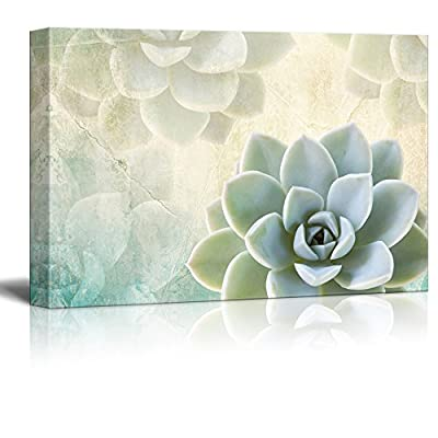Print Succulent Plants on Retro Style Background, Quality Artwork, Lovely Expertise