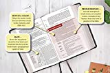 NIV, Life Application Study Bible, Third