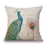 Pillow Shams 18 X 18 Inches / 45 By 45 Cm(twin Sides) Nice Choice For Coffee House,lover,shop,outdoor,adults,father Peacock