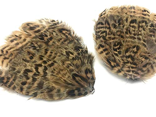1 Piece - Natural Brown Hungarian Partridge Hen Feather Pad Headdress Millinery Costume Party DIY | Moonlight Feather -