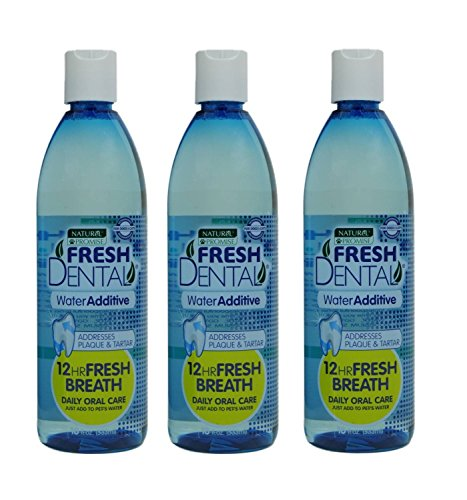 Cat Care Dental Dog (Naturel Promise Fresh Dental Water Additive for Dogs/Cats, 18-Ounce (3 Pack))