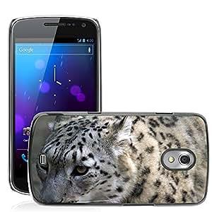 Super Stella Slim PC Hard Case Cover Skin Armor Shell Protection // M00145252 Snow Leopard Close Profile Cat // Samsung Galaxy Nexus GT-i9250 i9250