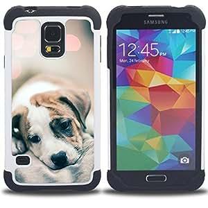 For Samsung Galaxy S5 I9600 G9009 G9008V - puppy fur blurry cute baby dog lights Dual Layer caso de Shell HUELGA Impacto pata de cabra con im????genes gr????ficas Steam - Funny Shop -