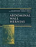 img - for Abdominal Wall Hernias: Principles and Management (Bendavid, Abdominal Wall Hernias) book / textbook / text book