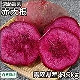 赤大根 約5kg 自然農法 (青森県 遠藤農園) 産地直送