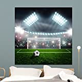 Wallmonkeys Soccer Ball Green Stadium Wall Mural Peel and Stick Graphic (48 in H x 48 in W) WM356876