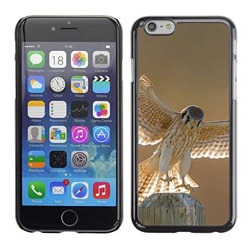 """Premio Sottile Slim Cassa Custodia Case Cover Shell // F00004950 la faune aviaire // Apple iPhone 6 6S 6G PLUS 5.5"""""""