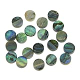 KAISH 20pcs 5x2mm Natural Paua Abalone Shell Guitar
