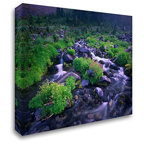 Paradise River with Wildflowers, Mount Rainier National Park, Washington 46x37 Extra Large Gallery Wrapped Stretched Canvas Art by Fitzharris, Tim