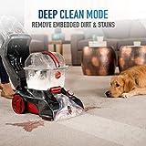 Hoover FH50251PC Power Scrub Elite Pet Upright