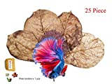 FANCYTE 18-25CM 50 Grams(25PIECES ) INDIAN ALMOND LEAVES Fish Tank for Shrimp, betta fish ,Improve comfort by simulating natural aquatic enviro Graint leaves.