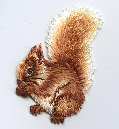 Natural Squirrel Eating Nuts Iron on Embroidered Patch