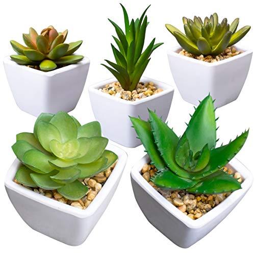 Artificial Succulent Plants for Decoration, Fake Succulent Plants in Pot, Fake Plants For Decoration, Faux Succulents, Fake Succulents, Faux Plants decor, Artificial Plants Home Decor, Set of 5