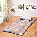 DHWJ Student Dormitory Bed Mattress mat,Padded mat,Collapsible Tatami Mattress-A 90x195cm(35x77inch)