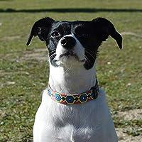 THE PAW STATE | Collar para Perro Ajustable Wonder Doggy | Tallas S, M, L Disponibles | Suave y Resistente | Collar de Perro Diseñado en España | Donamos el 5% a