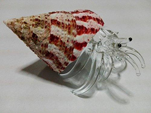 Nice, glass blowing crab natural seashell Pink shells : ( Ayutthaya shop ) Rare items (Matthew Santoro Halloween)