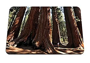 "Sequoia National Park, California- Mouse Pad - Gaming Mouse Pad - 8.6""x7.1"" inches"