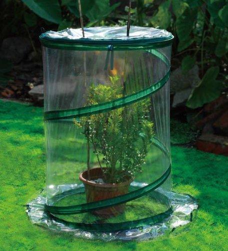 Zenport SH3240-10PK Pop-Up Greenhouse Protects Shrubs Small44; Box of 10