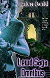 Warning: The tale you are about to read is a story of sexual creatures, human or otherwise. This tale is for adults 18 and up.Lewd Saga Omnibus is a 7 book collection, bringing together the epic tales of multiple players in a digital fantasy world fi...