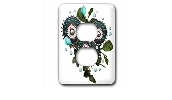 3dRose lsp/_102671/_6 Cool Steampunk Barometer and Aqua Roses 2 Plug Outlet Cover