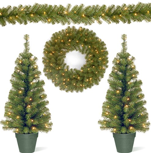 National Tree Promotional Assortment with 2 3 Foot Pre-Lit Entrance Trees, 9 Foot Pre-Lit Garland and 24 Inch Pre-Lit Wreath (PRO7-ASST-11) (Outdoor Pre-lit Christmas Garland)
