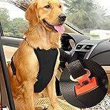 Dog Safety Vest Harness with Safety Belt for Most Car, Travel Strap Vest with Car Seat Belt Lead Adjustable Lightweight and Comfortable (S, Black)