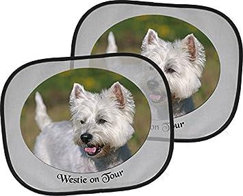 West Highland White Terrier 2 X Auto Sonnenschutz 4 Saugnäpfe 44 X 38 Cm Zweier Set Westie 01 Haustier