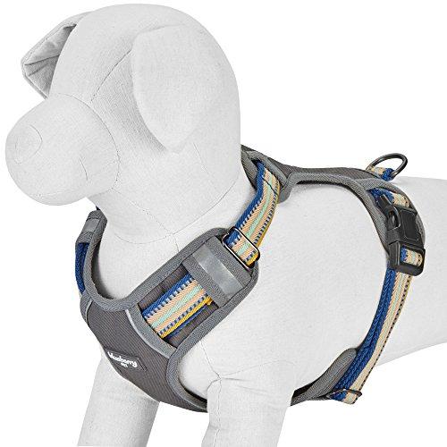 mesh harness small - 6