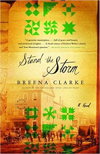 Image result for stand the storm breena clarke