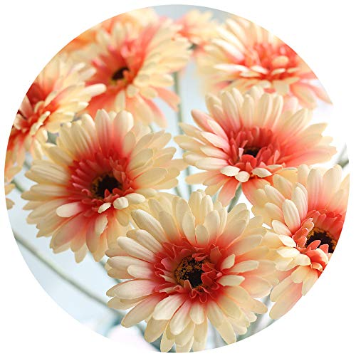 cn-Knight Artificial Flower 12pcs 22'' Long Stem Silk Daisy Faux Mums Flower Chrysanth Gerbera for Wedding Bridal Bouquet Bridesmaid Home Decor Office Baby Shower Prom Centerpiece(Princess Peach) (Gerbera Daisy Garland)
