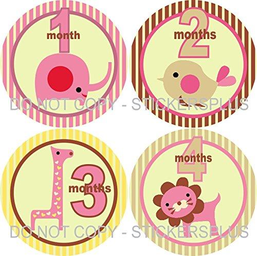 Baby Girl Month Stickers Monthly Baby Milestone Stickers Jungle Safari Animal Elephant Bird Giraffe Lion Pink Cream Yellow (Giraffe Lion Bird)