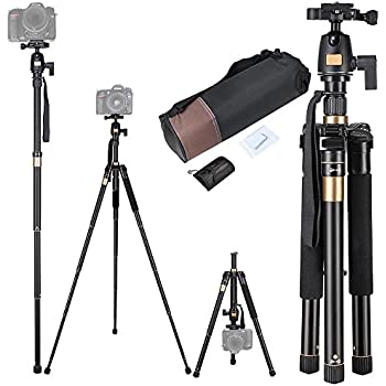 60 Inch Compact Camera Travel Tripod 360 Degree Swivel Ball Head 1/4 Quick Release Plate Carry Bag 5 Section Height Adju