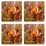 Liili Square Coasters Non-Slip Natural Rubber Desk Pads IMAGE ID: 23092118 Clownfish in an Anemone Bunaken Indonesia