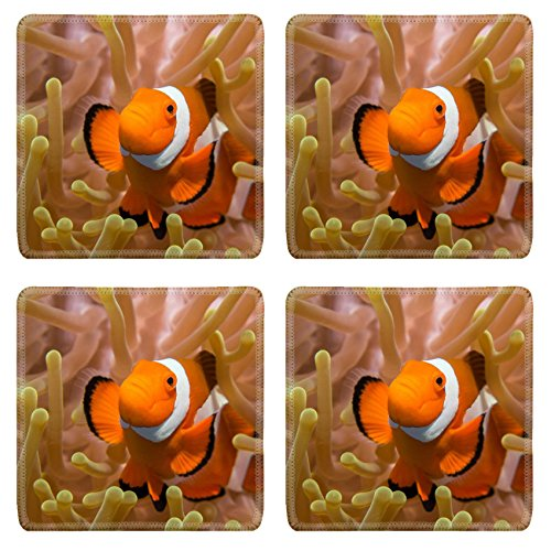 Liili Square Coasters Non-Slip Natural Rubber Desk Pads IMAGE ID: 23092118 Clownfish in an Anemone Bunaken Indonesia by Liili