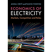 Economics of Electricity: Markets, Competition and Rules