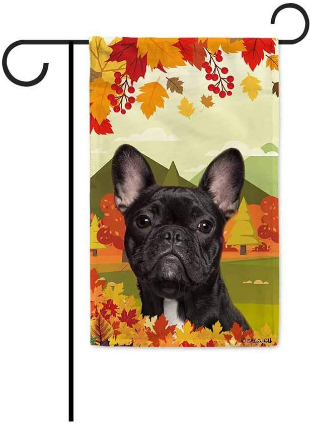 BAGEYOU Hello Fall in The Countryside with My Love Dog French Bulldog Decorative Garden Flag Autumn Maple Leaf Banner for Outside 12.5X18 Inch Printed Double Sided
